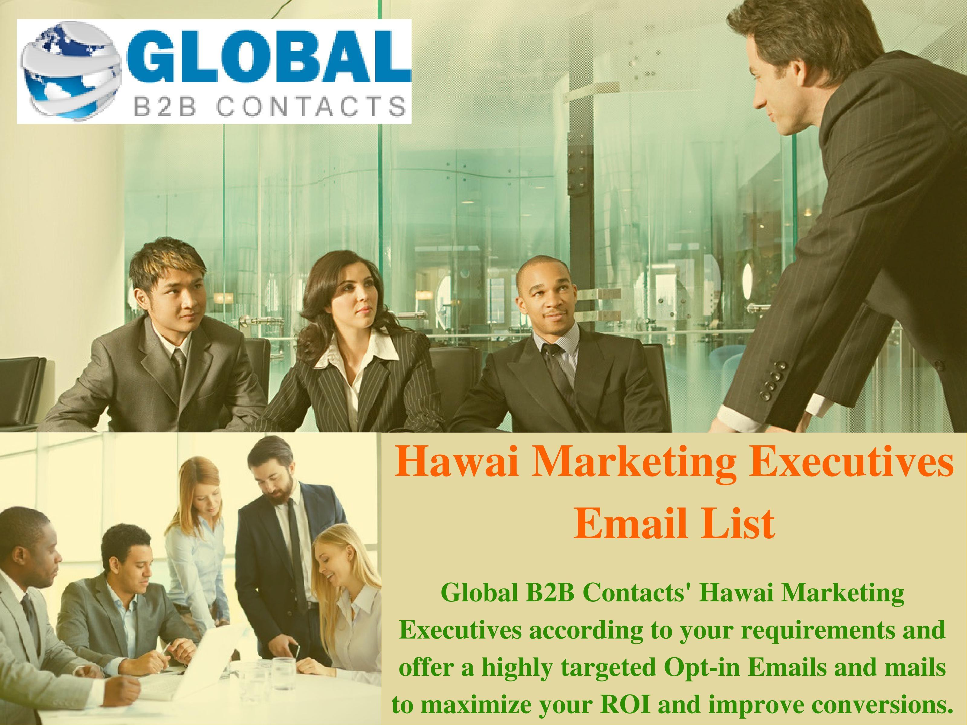 Global b2b contacts hawai marketing executives according