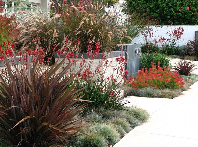 Inexpensive Landscaping Ideas To Beautify Your Yard Inexpensive Landscaping Modern Landscape Design Landscape Design
