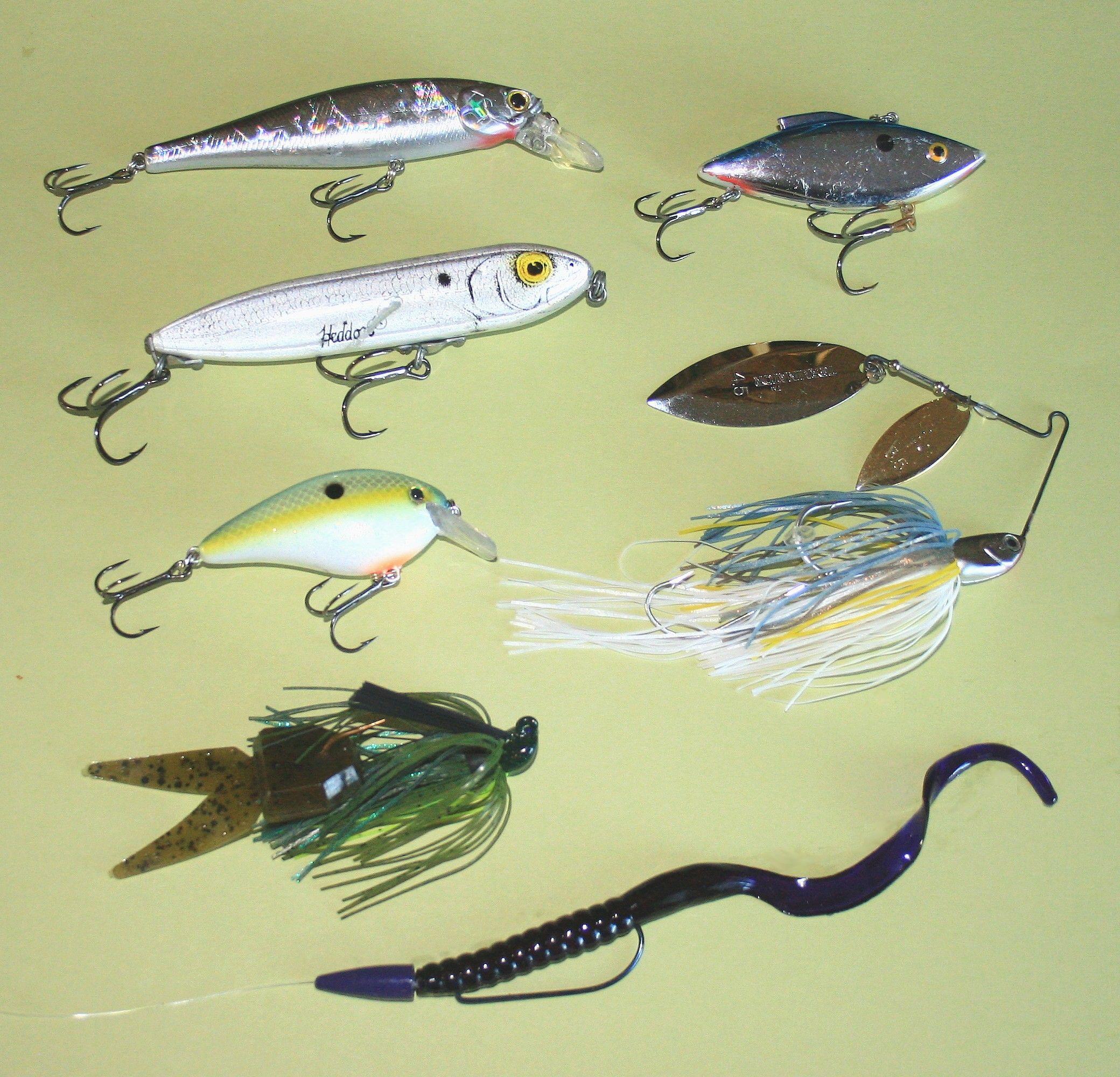 Fall Largemouth Bass Largemouth Bass Bass And Fish