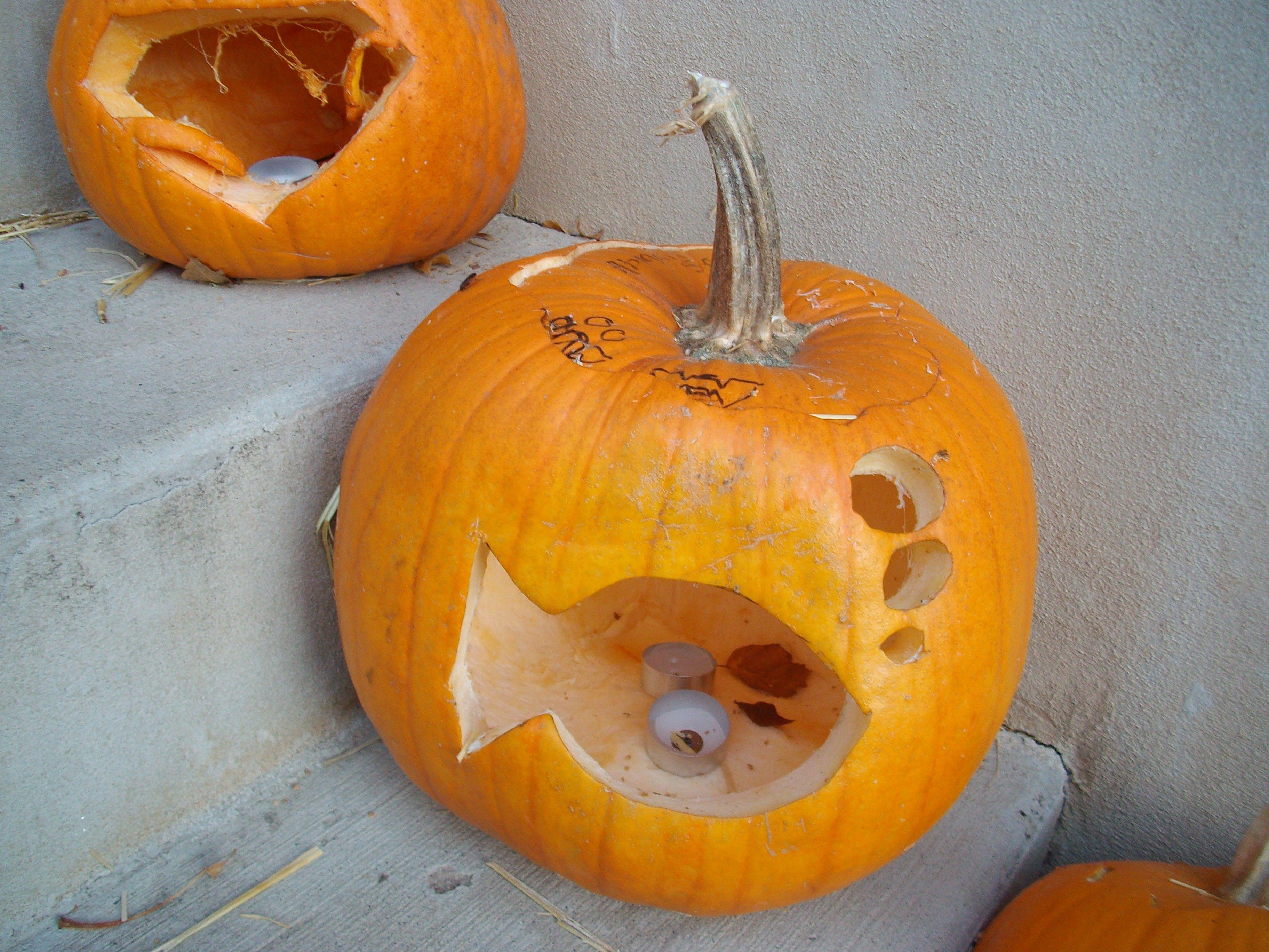 My goldfish pumpkin, South Weber, Utah, 2010