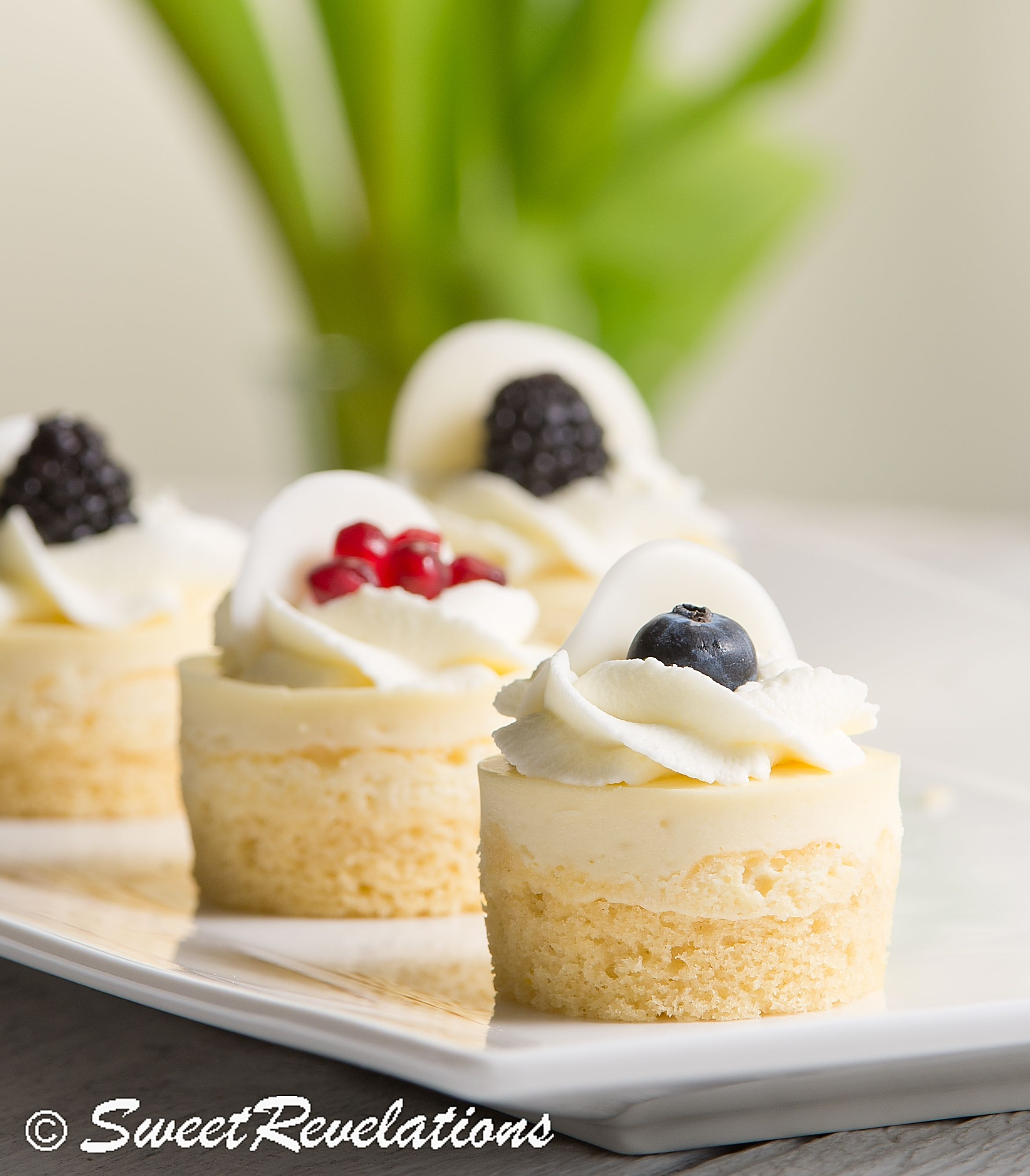 Mini Lemon Sponge Cheesecakes