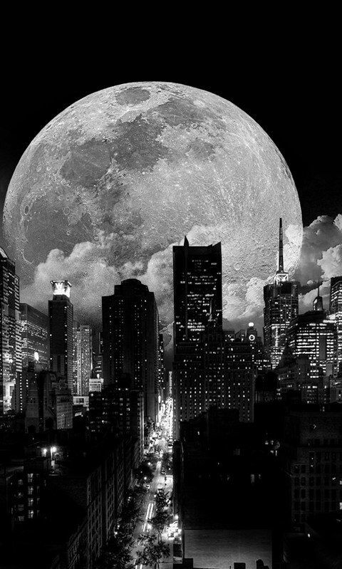 The moon   on We Heart It