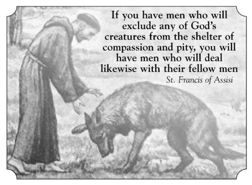 Finally Pope Francis Believes Compassion For Animals Can: Quotes, Animals, St Francis