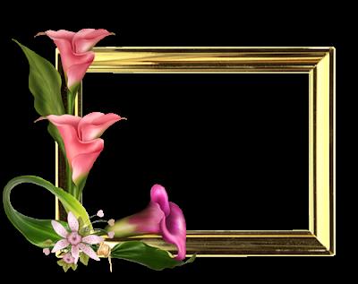 براويز صور 2020 اطارات مزخرفة للصور Flower Frame Paper Background Art Wallpaper