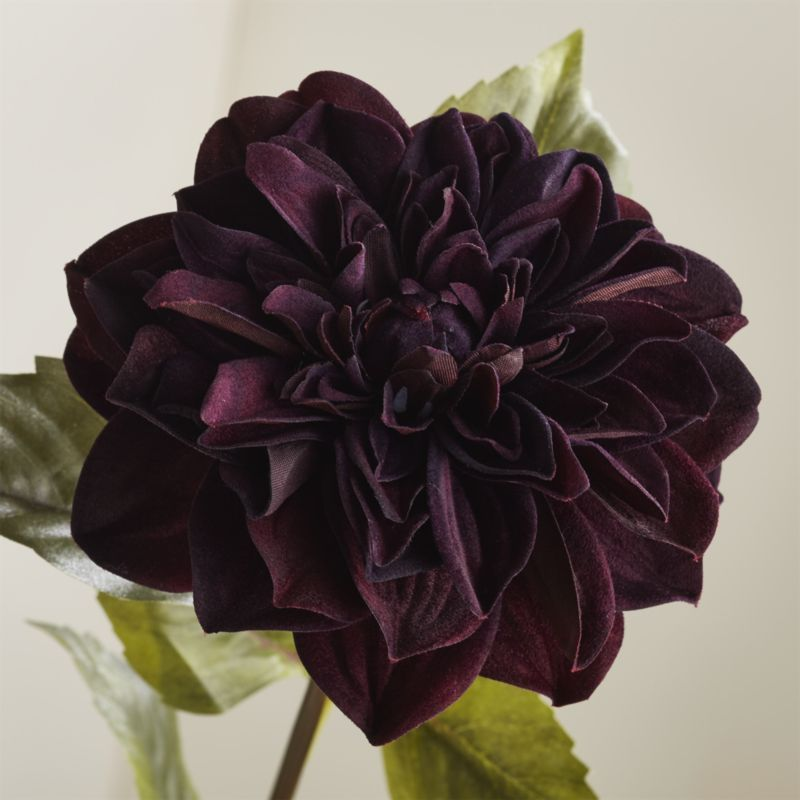 Shop Black Dahlia Stem Our Faux Branch Recreates The Lovely Look Of Dahlia S Multi Layered Petals In A Deep Burgundy Black Dahlia Dahlia Flower Faux Branches