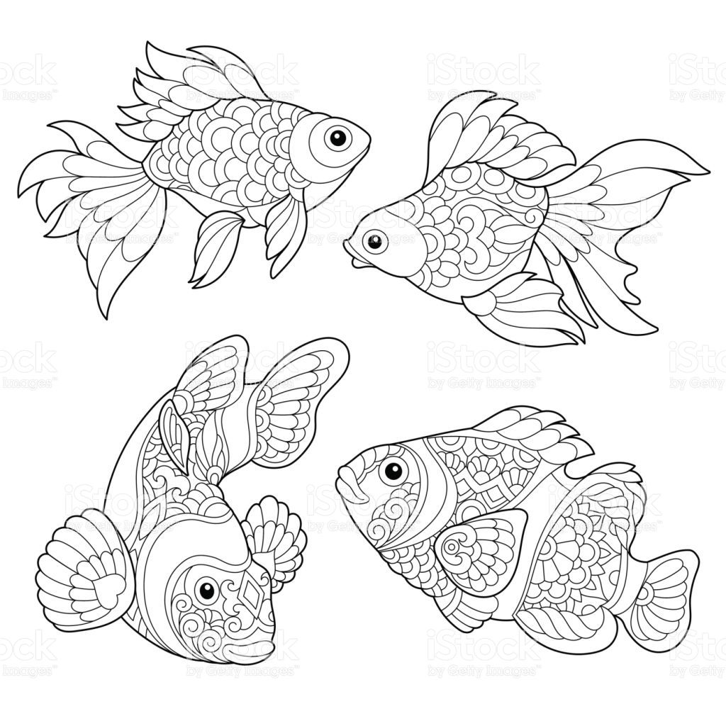 Collection of different fish species. Freehand sketch for adult…