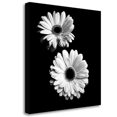 Tangletown Fine Art 'Gerbera Portrait I' Graphic Art Print on Wrapped Canvas | Wayfair