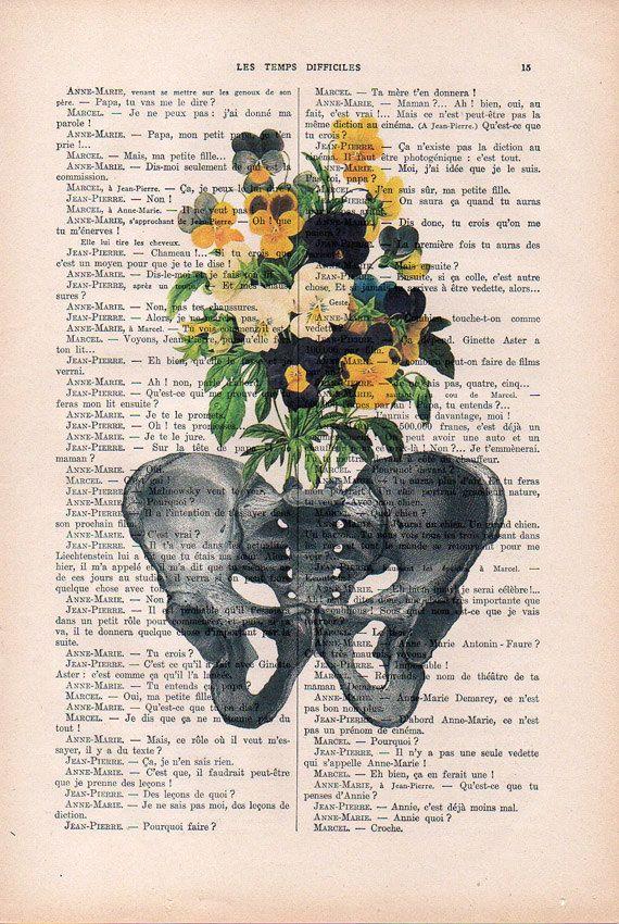 Botanico Pansy Pelvis Anatomia Impresion En 1900 Vintage Floral