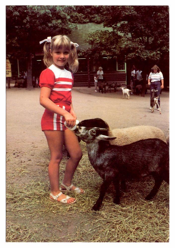 Animal Nursery Postcard Catskill Game Farm New York Girl Feeding Goat Sheep