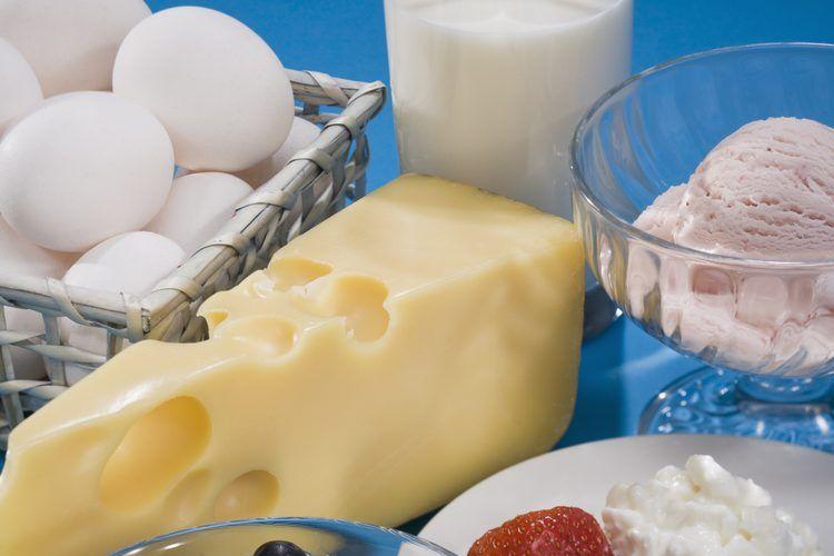 Cómo son absorbidos los nutrientes en los huesos?. La nutrición ...