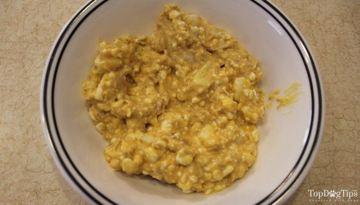 Homemade Dog Food For Liver Disease Recipe How To Video Dog
