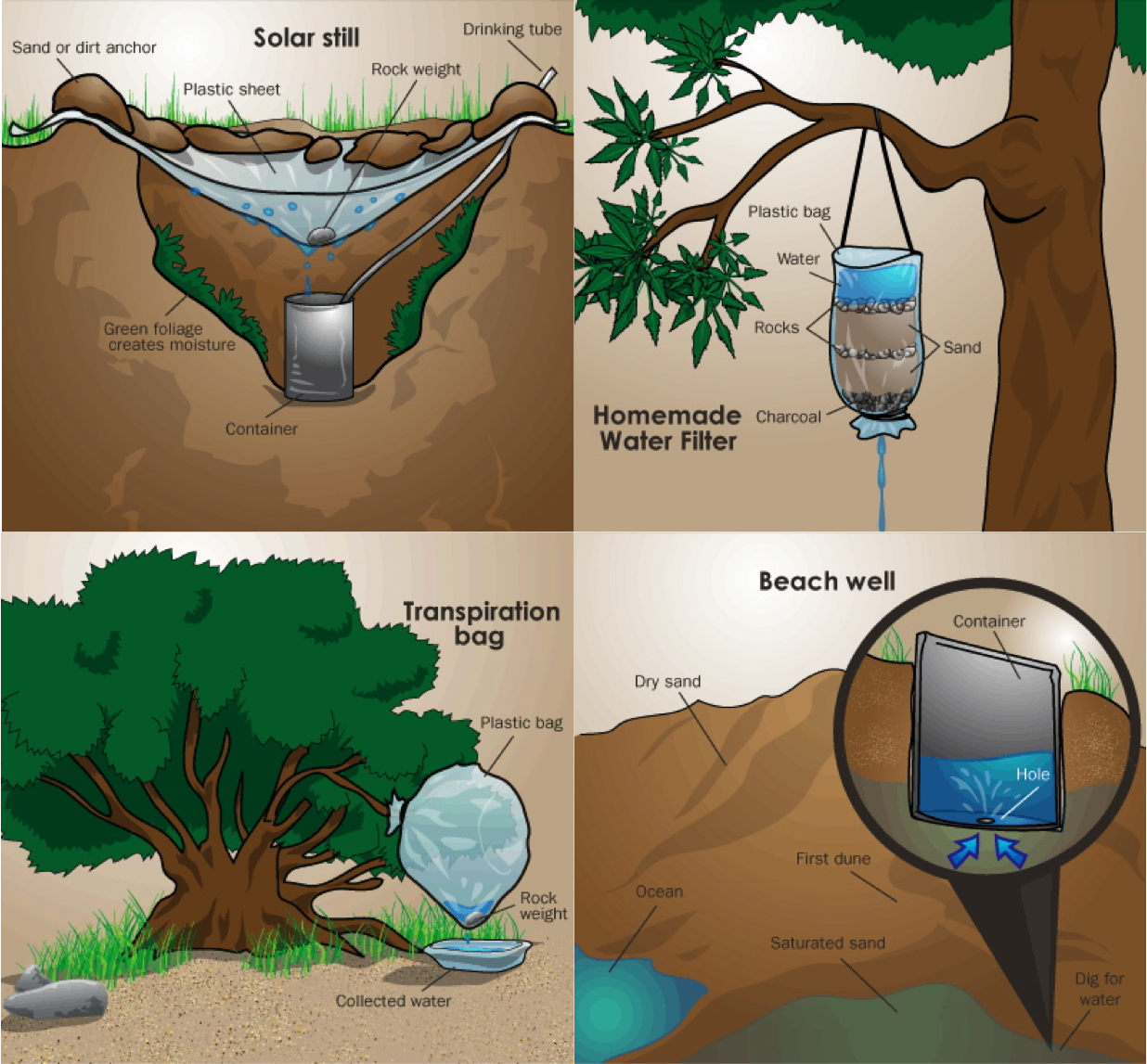 Photo of How to find Water