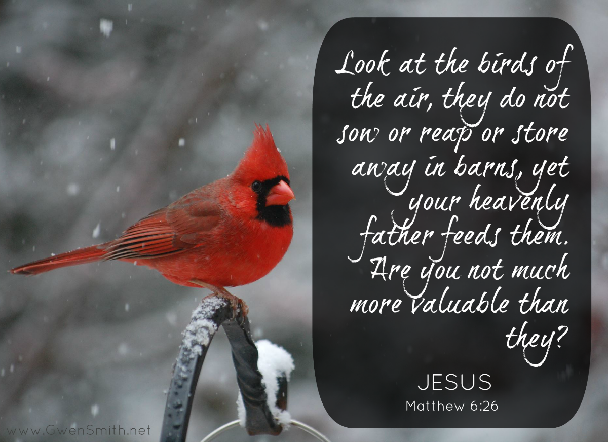 Don T Worry Jesus Matthew 6 25