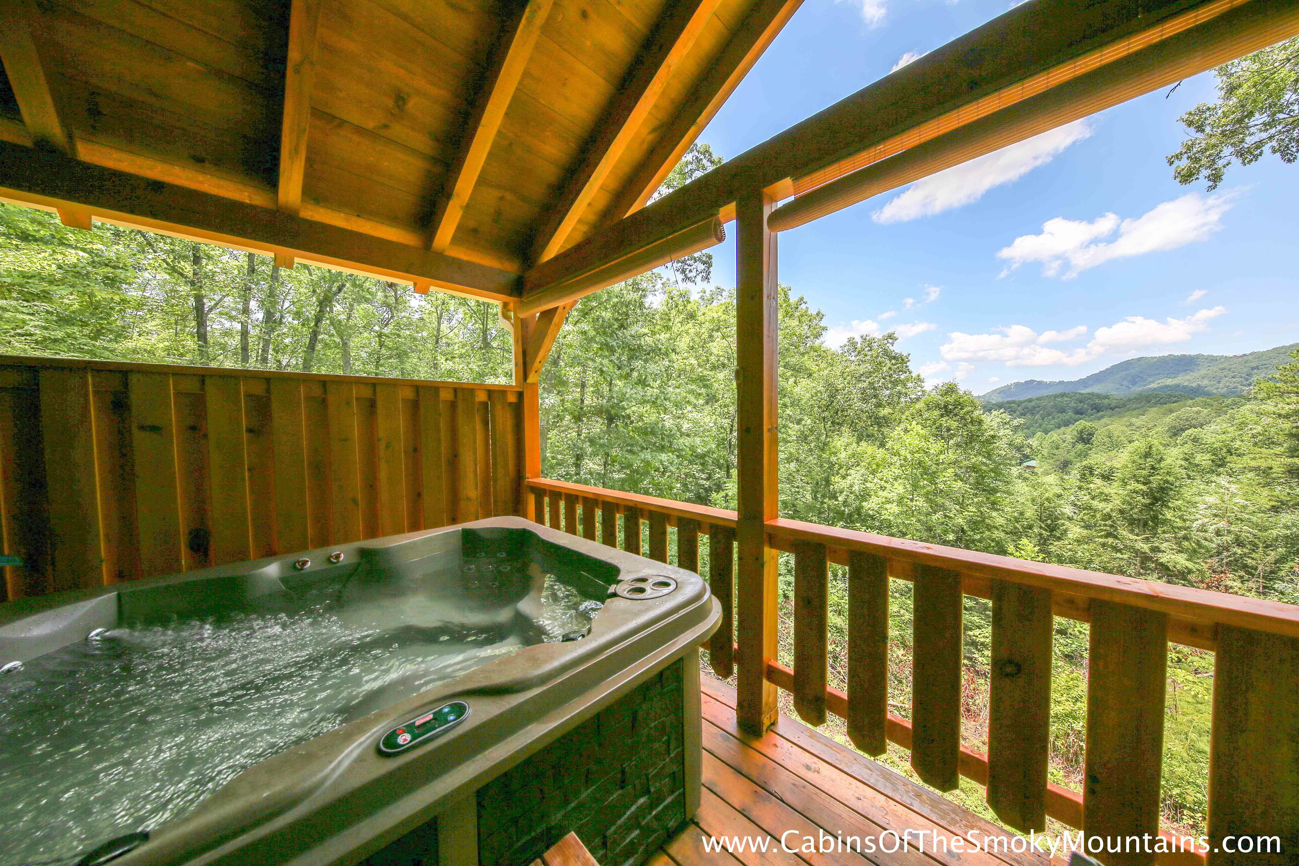 bears gatlinburg mountain pigeon swimmin smoky online bedroom cabins with forge