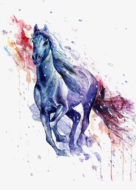 Horse Splash In 2020 Watercolor Horse Horse Art Horse Artwork
