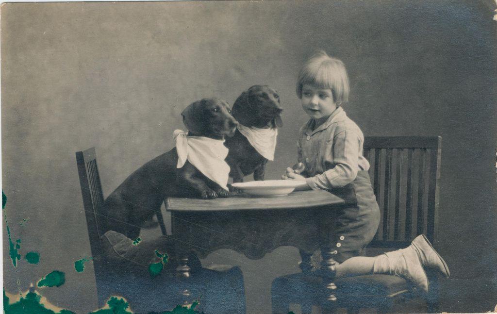 Feeding the dogs. 1920s