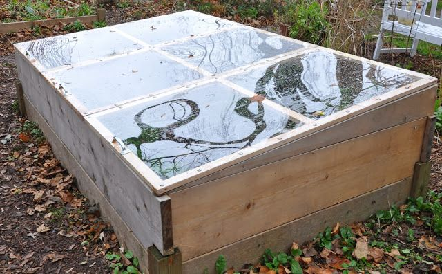 Three Dogs in a Garden: Cold Frame How-to