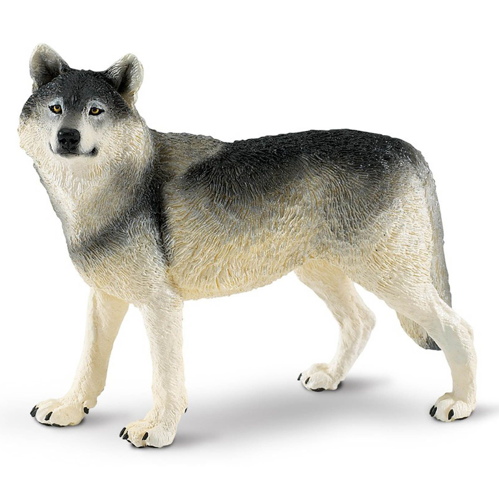 Grey Wolf Wildlife Wonders Figure Safari Ltd Animals Pet Toys