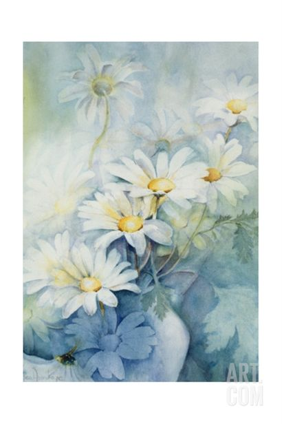 Marguerites, Alexandria Giclee Print by Karen Armitage at Art.com