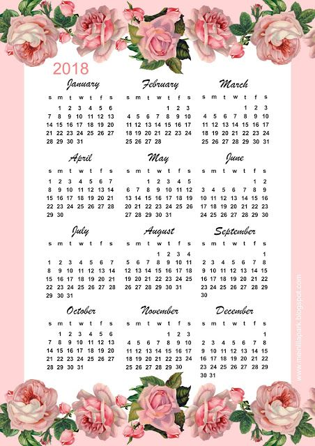 2018 year at a glance calendar printable