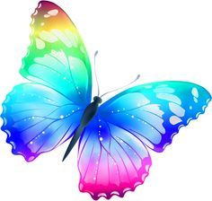 Beautiful Water Color Butterfly In Rainbow Colors Fotos De