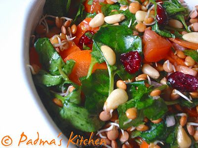 Red Lentil Sprout Salad with Spicy Vinaigrette