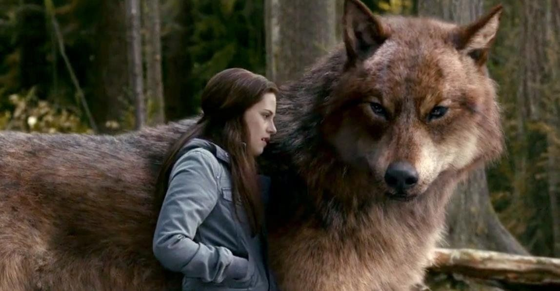 Bella talking to Jacob in werewolf form | Twilight in 2019 ... Werewolf Twilight Jacob