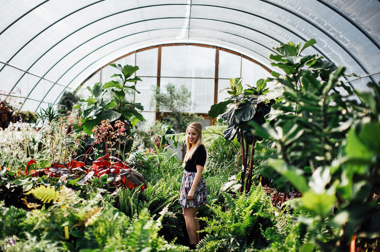 Hewitt S Garden Center Nashville Tn Garden Center Garden Design Center