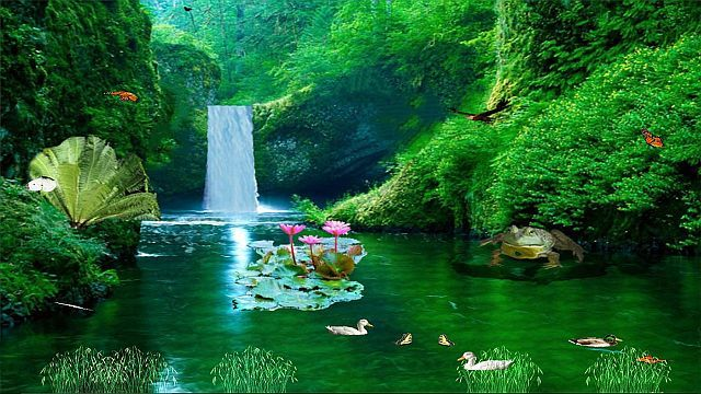 New Zealand Waterfall Animated Wallpapers Waterfall Wallpaper Hd Nature Wallpapers Waterfall