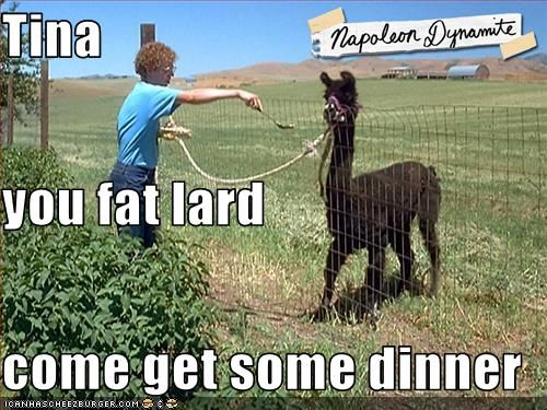 Tina You Fat Lard Come Get Some Dinner Favorite Laughs Funny