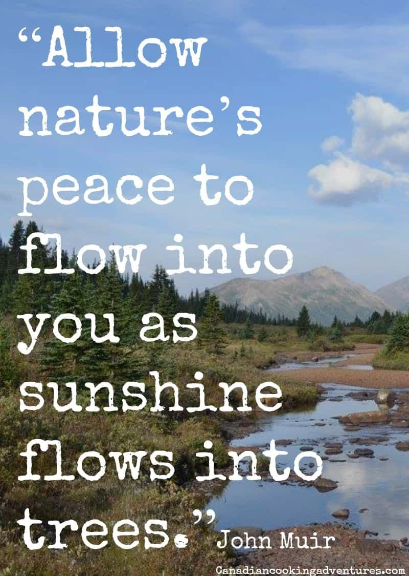 More Quotes On My Blog Nature Peace Quotes Quote Quotes From