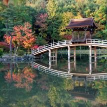 NEW BRIDGE AT EIHOJI TEMPLE!