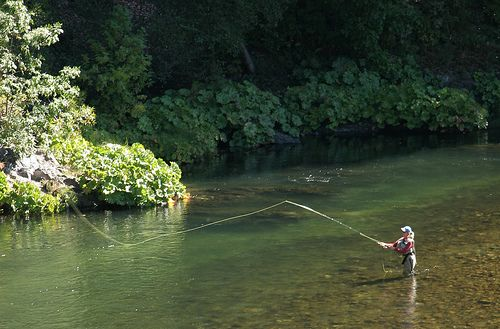 Upper Sacramento By Http Www Shastatrout Com Fishing Places Fishing Photo Fly Fishing