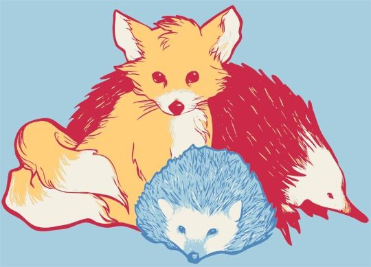 Sonic Tails And Knuckles As Real Animals This Actually Looks Really Cute Desenhos Do Sonic Ilustracao Animacao