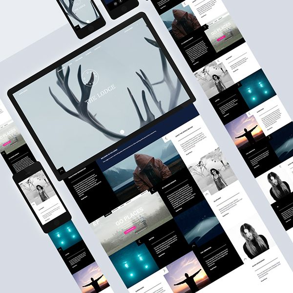 Camp David on Web Design Served