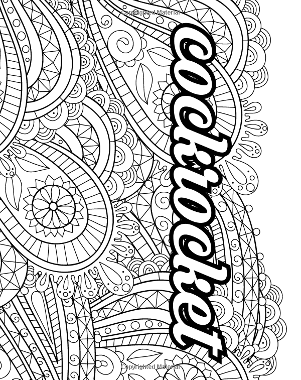 Amazon Com Potty Mouth A Coloring Book For Adults 9781530709533 J A Hildreth Books Coloring Books Potty Mouth Books