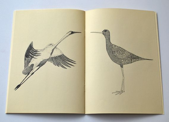 Illustrator Nigel Peake's latest self published zine