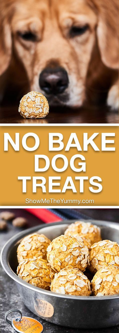 Dog Treats With Pumpkin And Applesauce