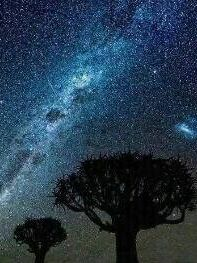 Una noche con estrellas que me gustaría ver