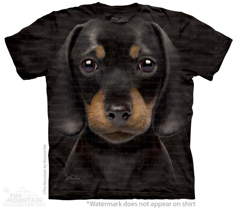 Dachshund Puppy T-Shirt - Click image to see hundreds of different animal t-shirts #themountaintees