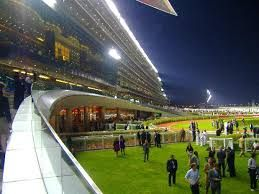 The Dubai World Cup has been watched by more than 1 billion TV viewers over the past three years.