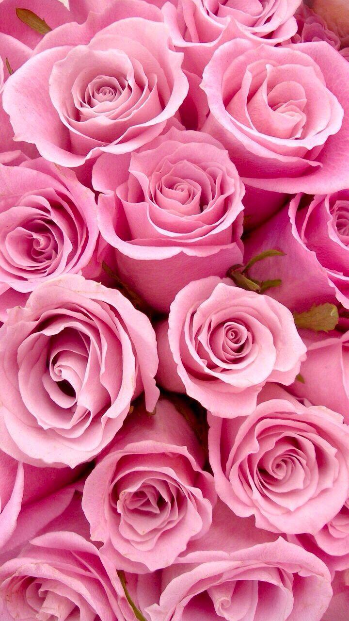 Надписью екатерина, вертикальные картинки цветы красивые