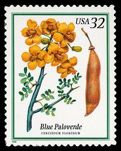32c Blue Paloverde single