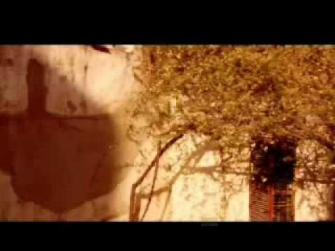 ™ - James Morrison - You Give Me Something - traduçao
