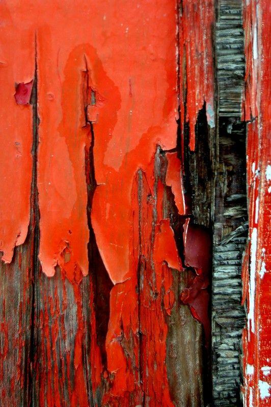 Rustic Wood | Impasse II