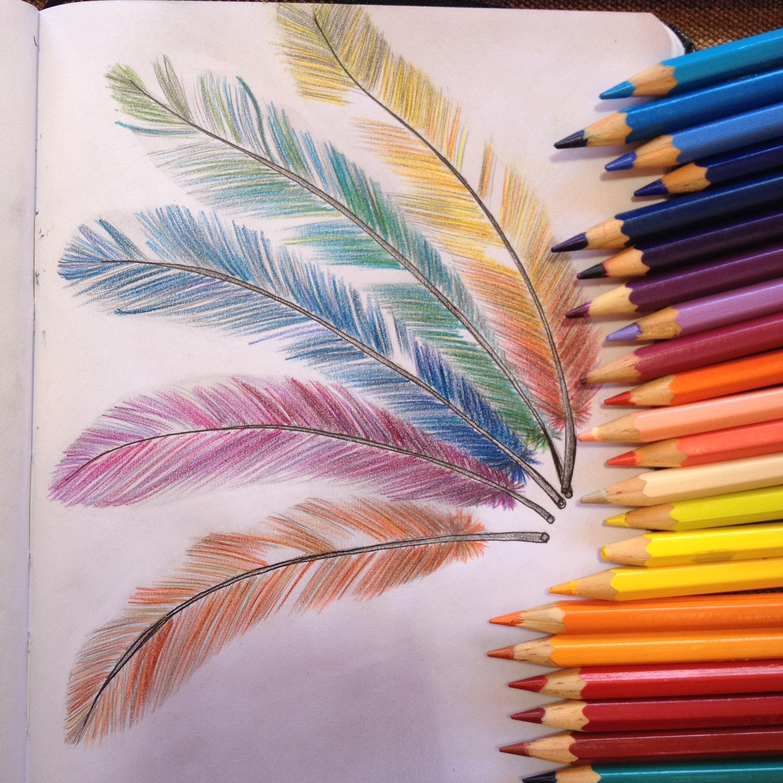 простые картинки которые можно нарисовать пастелью простаты это