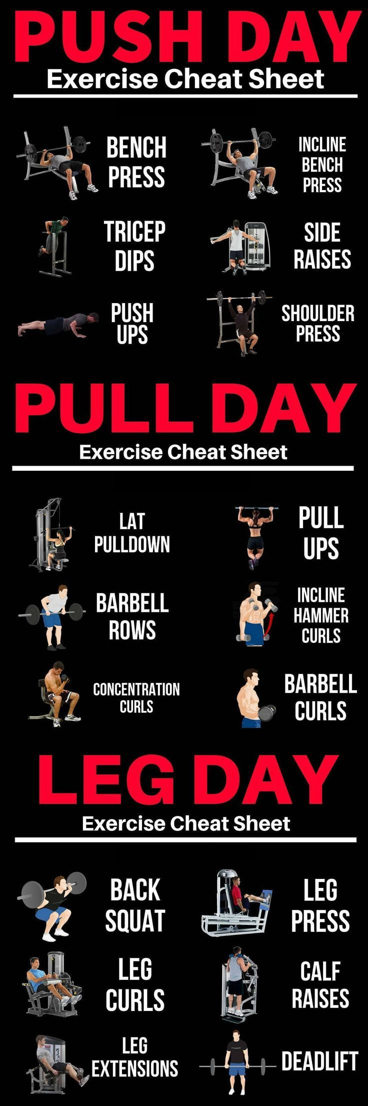 Push/Pull/Legs Weight Training Workout Schedule For 7 Days - GymGuider.com