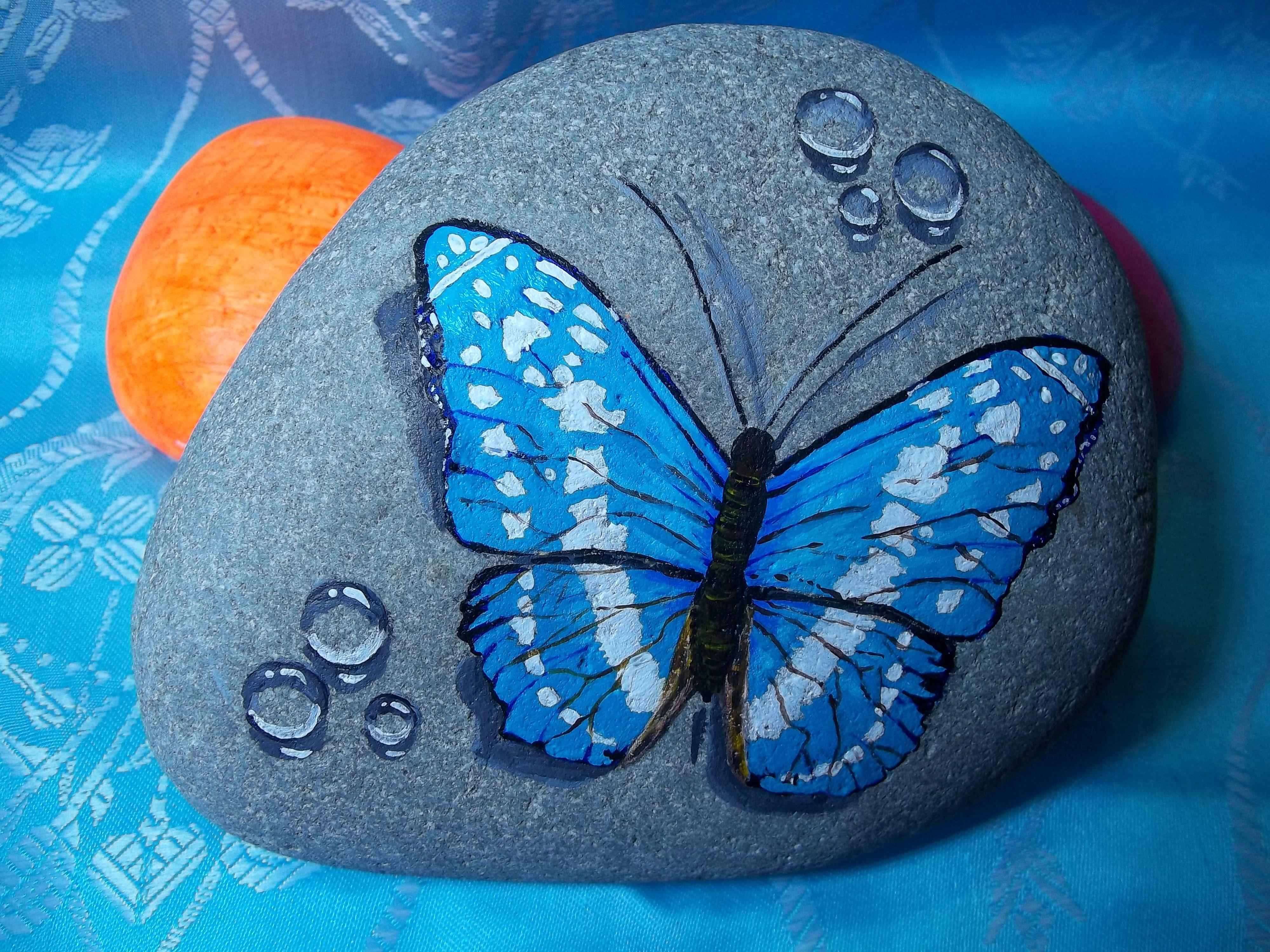 Tas Boyama Kelebek Rock Painting Art Stone Art Hand Painted Rocks