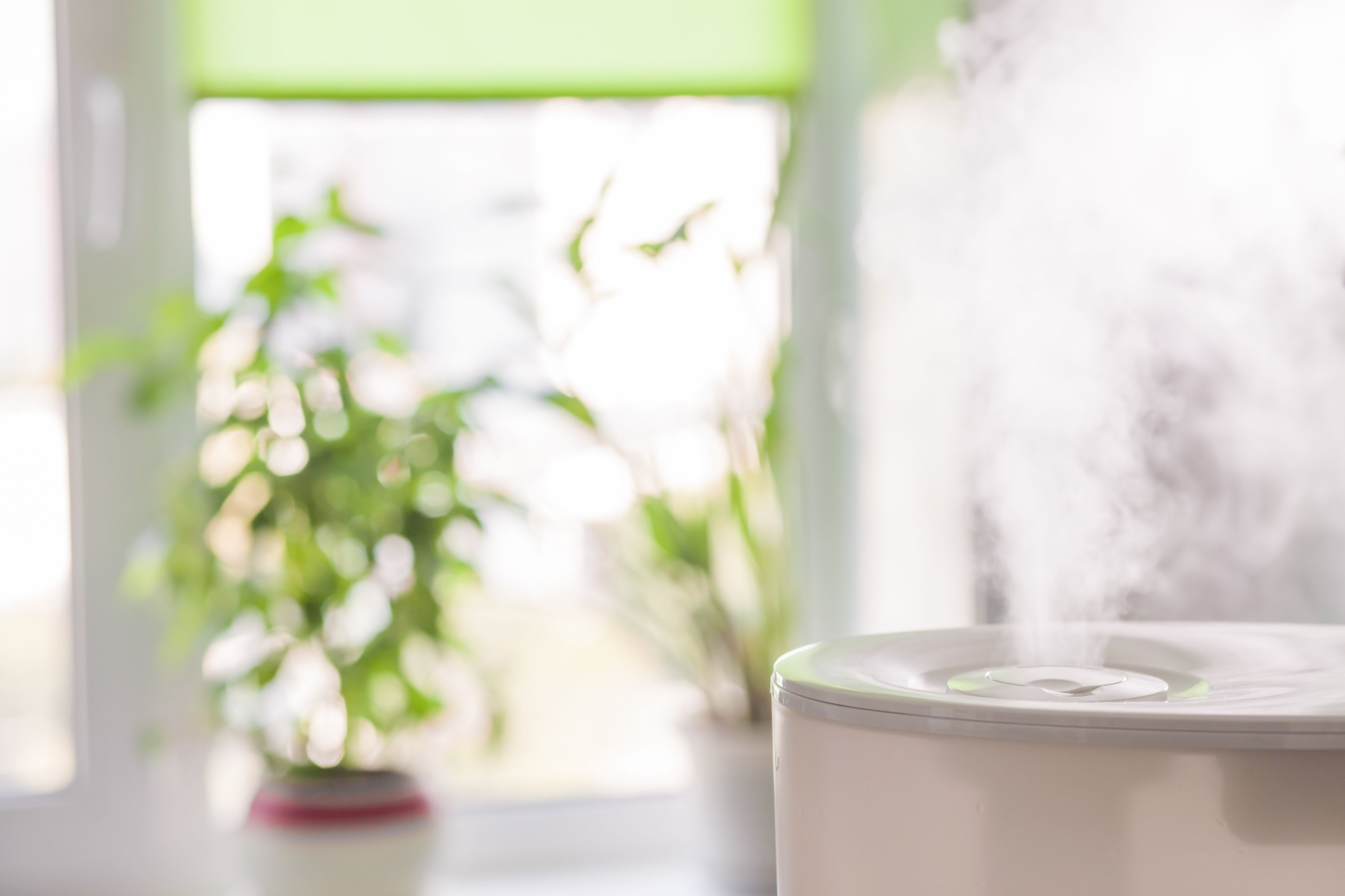 Clearing the Air with a Whole House Air Purifier in 2020