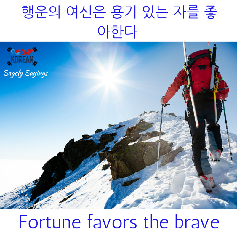 fortune favors the brave 한국어 속담 Korean Proverb
